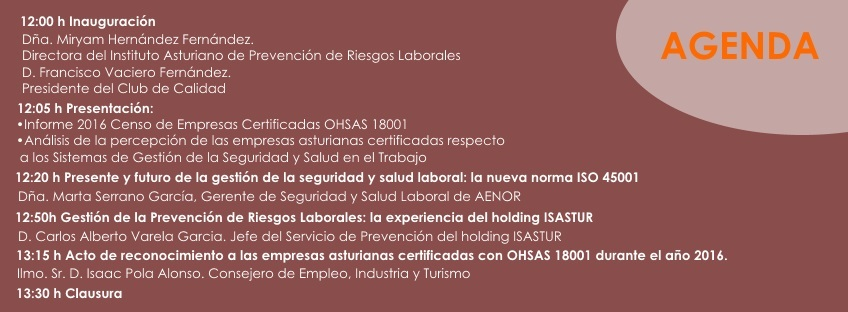 irs_lideres_iapr_ohsas_ic
