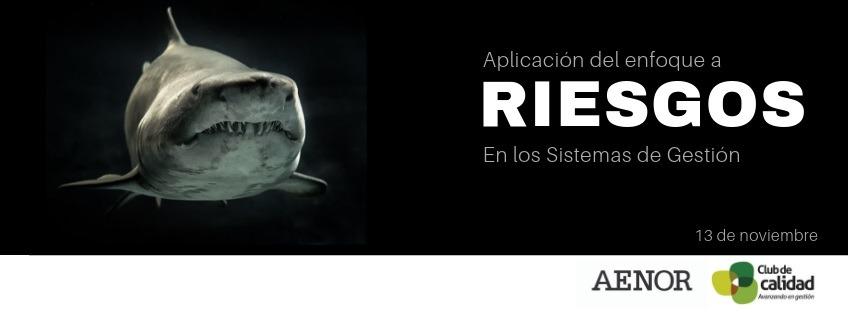 Curso: Aplicación del enfoque a riesgos en los Sistemas de Gestión