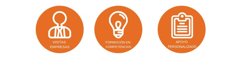 Proyecto: Habilidades para el Empleo Futuro III