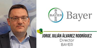 jorge-bayer